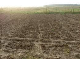 За принципової позиції Старобільської місцевої прокуратури припинено незаконне користування землі вартістю майже 800 тисяч гривень