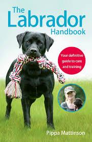 essay animal zoo book subscription