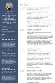 Ceo Graphic Designer Short Run Printer Resume Example Graphic