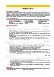 Director Resume Sample It Director Resume Sample Program Manager Full Template Word 47
