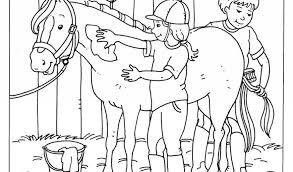 Kleurplaten Paarden En Veulens Concept Wanda Van Balen Wvanbalen Op