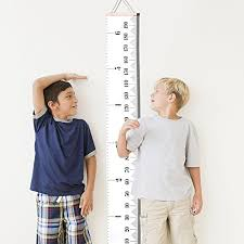 Growth Charts Hanging Rulers Talltape Portable Roll Up Hang