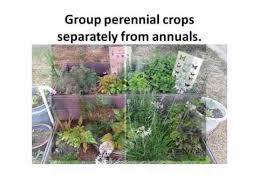 florida vegetable gardening. Your Florida Vegetable Garden - Plant Selection And Layout Gardening