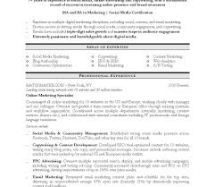 Professional Resume Templates Free Download It Professional Resume Template Doc Templates Free Download 46