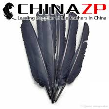 Eagle Party Decorations Gold Supplier Chinazp Crafts Factory Good Quality Dyed Grey Turkey