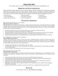 Best Project Coordinator Sales Coordinator Resume Good Resume Now