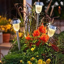 planter lighting. solar lights in a planter lighting