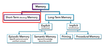 Types Of Memory Chart Short Term Memory Dynamicbrain