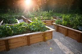 Small Picture Garden Design Garden Design with Remodeling Kitchen with Modern