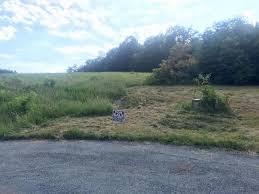 2 Polly Lane, Rocky Mount, VA 24151 | For Sale | MLS #874257 - Movoto