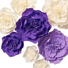 Paper Flower Photo Booth Backdrop Lings Moment Paper Flower Decorations 8 X Crepe Paper Import It All
