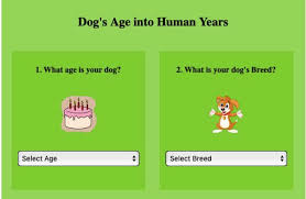 Dog To Human Years Conversion Chart Dog Years Calculator Convert Dog Age To Human Years 2019