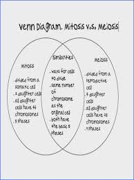 Venn Diagram Meiosis And Mitosis Elegant Comparing Mitosis And Meiosis Chart