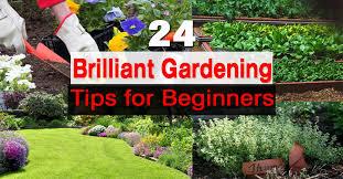 beginner gardening. Beginner Gardening L
