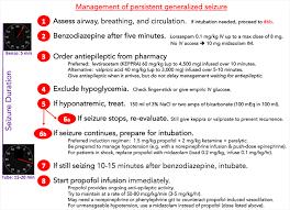 Pulmcrit Resuscitationists Guide To Status Epilepticus