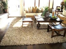 plush area rugs for living room. Plush Area Rugs For Living Room Memorable Contactmpow Interiors 1 S