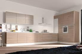 Modern Kitchen Cabinet Pulls Modern Kitchen Inspirations Modern Kitchen Cabinets Design Photos