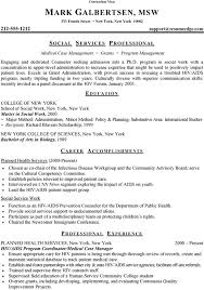 Curriculum Vitae Writer 5 How To Write A Student Cv Format Lease Template
