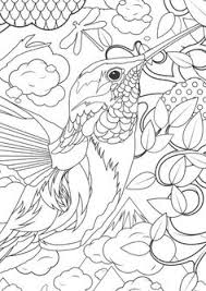 Small Picture Printable Hummingbird Coloring Pages Coloring Animal Kingdom