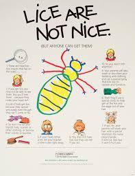 Eutsey D s Website Head Lice