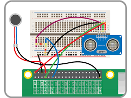 worksheet see like a bat raspberry pi learning resources the motor using pulse width modulation pwm this will send pulses of current to the motor the faster the pulse the quicker the motor will vibrate