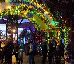 Indianapolis Zoo Lights Heres How To Vote For The Indianapolis Zoo In Usa Todays