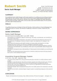 Audit Manager Resume Samples Skills Audit Template For Staff