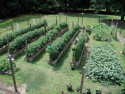 elegant best vegetable garden layout best vegetable garden design alices garden
