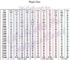 Poodle Growth Chart Weight Best Picture Of Chart Anyimage Org