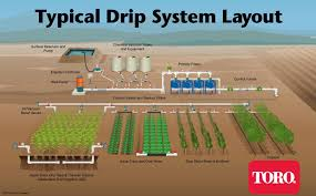 garden irrigation systems. Beautiful Irrigation Netafim Drip Irrigation  The Typical System Layout Shows  How Is Used In  Intended Garden Irrigation Systems R