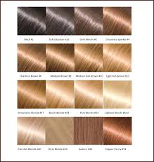 Hairstyles Dark Mocha Hair Color Engaging Different Brown