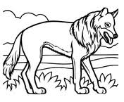 Small Picture Coyote coloring pages Free Coloring Pages
