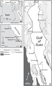 Lower And Middle Miocene Biostratigraphy Gulf Of Suez