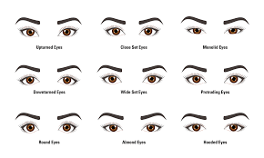 ilration of 9 diffe eye shapes