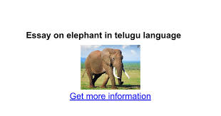 essay on elephant in telugu language google docs