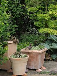 garden containers container gardening