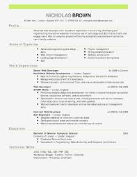 Entry Level Rn Resumes 10 Entry Level Registered Nurse Resume Proposal Sample