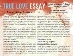 Essays On Love Sex Would You Like Love That Teen Essay About