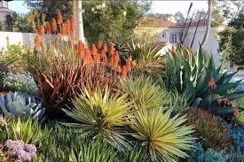 a superb mediterranean front yard with