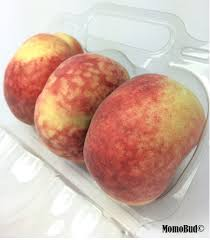 saturn donut peach box inside