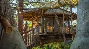 a fabulous 45th the swiss family robinson treehouse