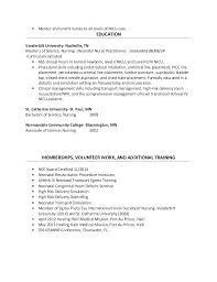 Entry Level Nurse Practitioner Resume Templates Critical Care