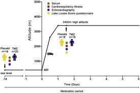 Trimetazidine Attenuates High Altitude Fatigue And