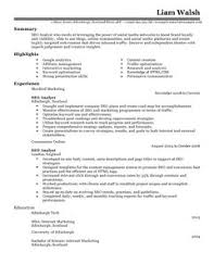 All CV's and Cover Letters are downloadable as Adobe PDF, MS Word Doc, Rich  Text, Plain Text, and Web Page HTML Formats. Click to Enlarge Image