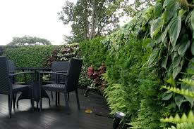 Small Picture Vertical Garden Design Ideas Modest Garden Wall Ideas Design Ideas