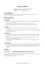 Special Project Based Resume Example Skills For Cv Sample Ins