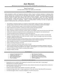 Banker Resume Summary Business Sample Template Objectiveamples Word