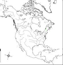 Latin America Blank Map Quiz North Printable Inside And South On