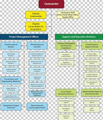 Organizational Chart Diagram Division Png Clipart Area