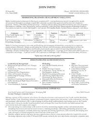 Business Resume Template Adorable Professional Resume Examples For College Students Formatting
